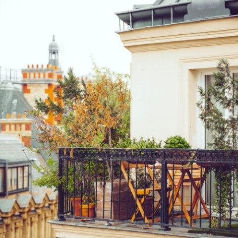 paris terrace in the fall
